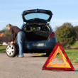 Changing the tire on a broken down car — Stockfoto