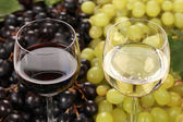White wine and red wine in glasses — Stock Photo
