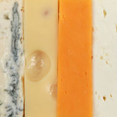 Four different types of cheese — Stock Photo