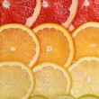 Background from lemons, oranges, grapefruits and limes — 图库照片