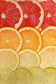 Background from lemons, oranges, grapefruits and limes — Stock Photo