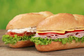 Sub Sandwiches with ham and salmon — Stock Photo