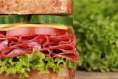 Sandwich with pepperoni — Stock Photo