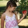 Foto Stock: Little girl having appetite for apple