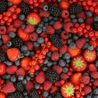 Berries background — Stock Photo #33573655