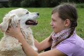 Cão carícia delicada de criança num prado — Fotografia Stock