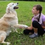 Dog shaking hands with a child — ストック写真