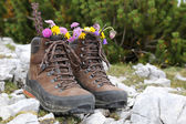 Hiking boots with flowers in the mountains — Stock Photo