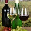 Red and white wine in bottles — Stock Photo