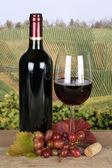 Red wine in a bottle in the vineyards — Stock Photo