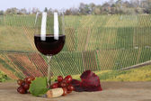 Red wine in a glass in the vineyards — Stock Photo