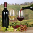 Wine pouring from bottle into glass in the vineyards — Stock Photo #42251075