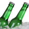 Beer bottles on ice — Stock Photo #49432469