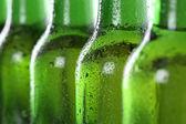 Cold beer in bottles — Stockfoto