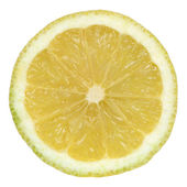 Sliced lemon on a white background — Stock Photo
