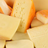 Cheese selection with Gouda and Swiss cheese — Stock Photo
