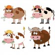 Stock Vector: Cow cartoon.