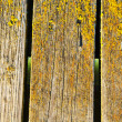 Background of mossy wooden bridge board closeup — Stock Photo