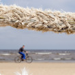 Closeup thick rope and cyclist go sea coast beach - Stock Photo