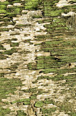 Telón de fondo retro peladura de madera pintura pared closeup — Foto de Stock