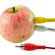 Tulip audio video wires plugs connected to apple — Stock Photo #13304758