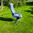 Boss chief office chair in garden lawn grass cut - Stock Photo