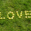 Word love of green apple on garden lawn — Stock Photo
