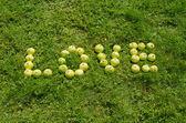 Word love of green apple on garden lawn — Stock Photo