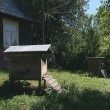 Stock Video: Hives and bees flying around of them. beekeeping in village.