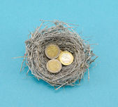 Silver bird nest and euro coins money on blue — Stock Photo