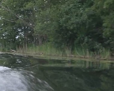 Lake water waves forming from floating motor boat. — Stock Video