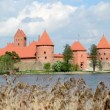 Stock Video: Rest Trakai castle