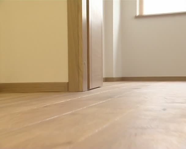 Recién instalado vivos detalles del piso de la casa. madera entarimado. — Vídeo de stock