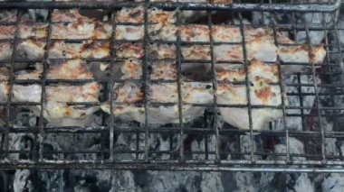 Shashlik meat bake turn — Stock Video