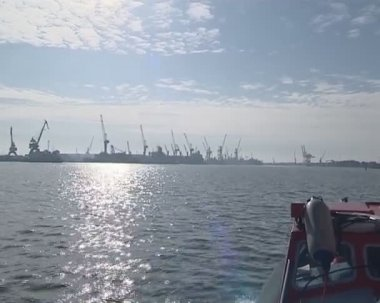 Lots of cranes for loading and unloading ships. cargo industry. — Stock Video