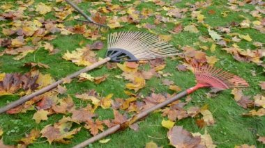Leaf raker worker take — Stock Video