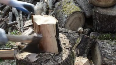 Wood chopping — Stock Video