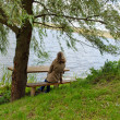 Stock Photo: Womsit wooden bench willow tree admire lake