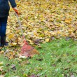 Stock Photo: Womred rake tool hand garden work leaves autumn
