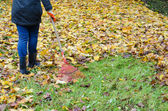 Woman red rake tool hand garden work leaves autumn — Stockfoto