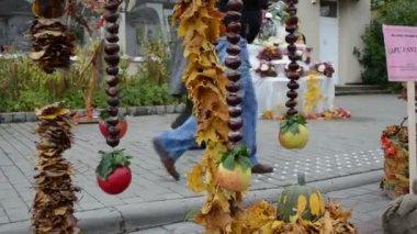 Autumn leaf conker decor — Stock Video