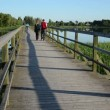 Stock Video: Couple walk bridge lake