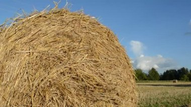 Closeup straw bale roll agriculture field heavy fuel truck — Vídeo Stock