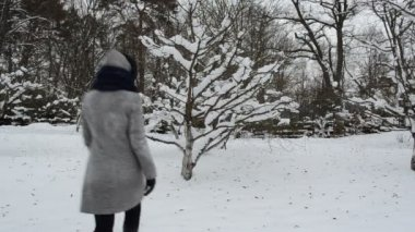 Woman shake tree snow — Stock Video
