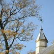 Stock Video: Church tower autumn tree