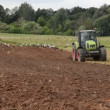 Tractor plow field stork - Foto de Stock  