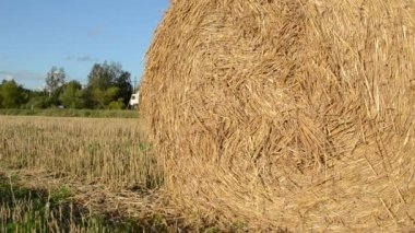Straw bale roll truck — Stockvideo