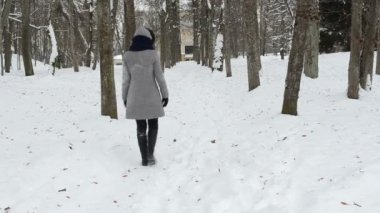 Woman walk path snow — Vídeo Stock