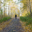 Stock Photo: Cyclist ride bicycle uphill road color autumn trees park forest