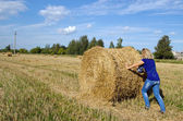 Woman jeans move push straw bale agriculture field — Stockfoto